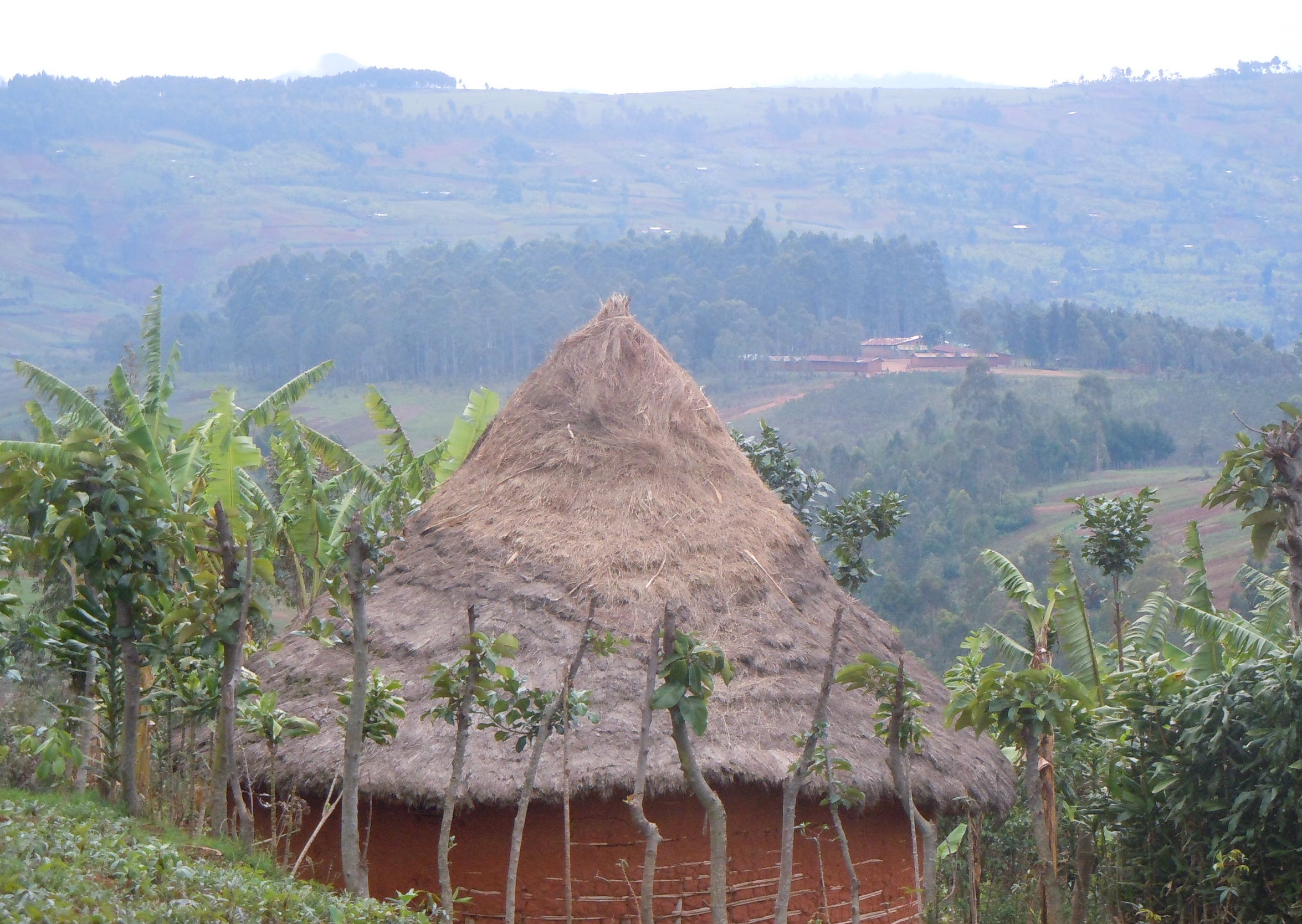 Habitation typique Congo.